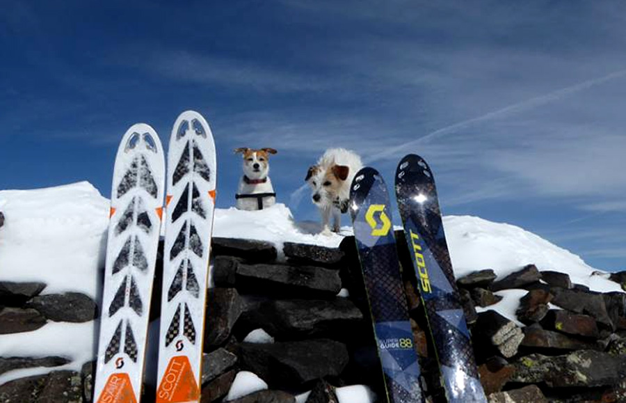 ski tour with dogs