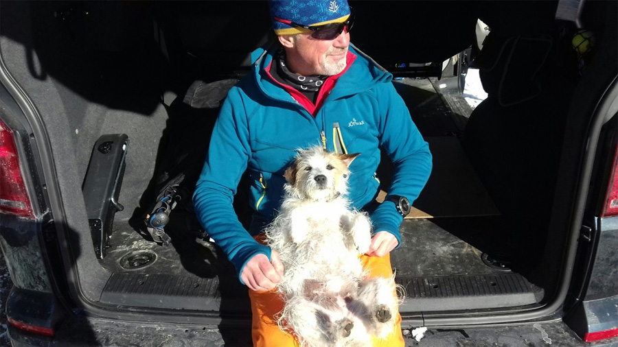 ski touring with dogs